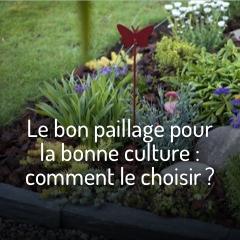 le-bon-paillage-pour-la-bonne-culture
