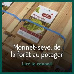 monnet-seve-de-la-foret-au-potager