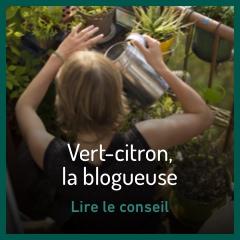 vert-citron-la-blogueuse