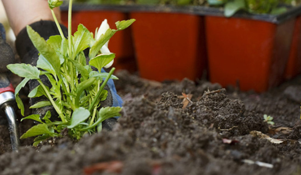 Slider_agenda-du-jardinier_3