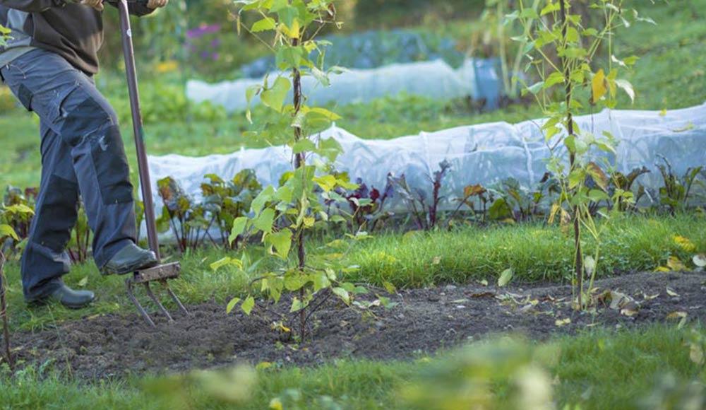 Slider_agenda-du-jardinier_5