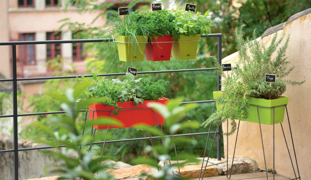 conseils potager astuces et conseils potager botanic botanic. Black Bedroom Furniture Sets. Home Design Ideas