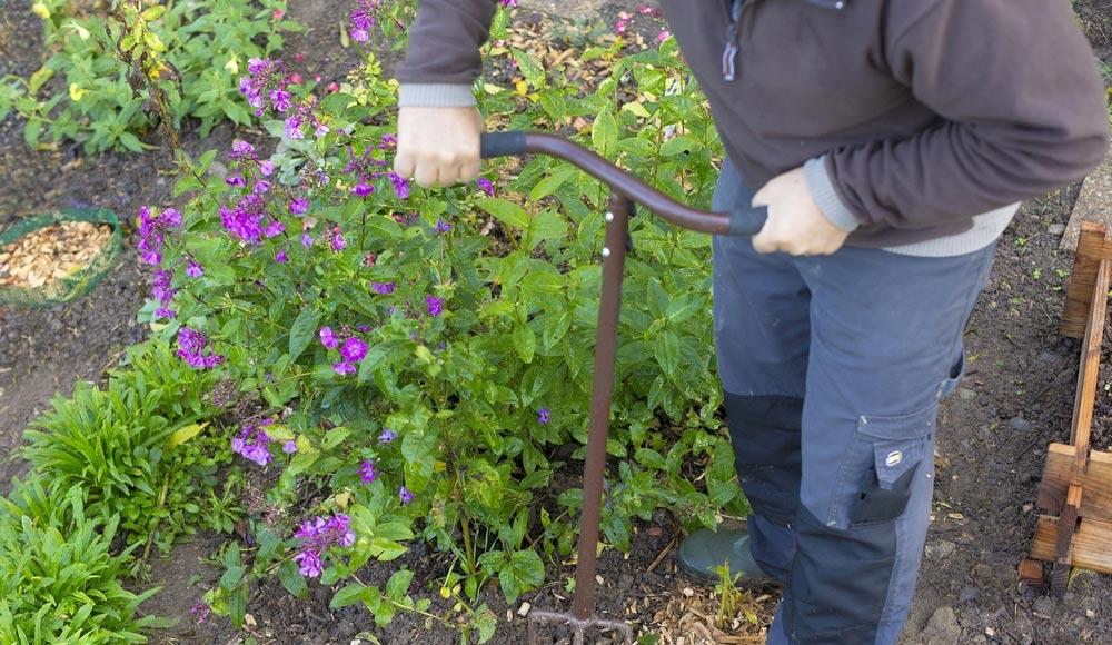 Les gestes du jardinage au naturel