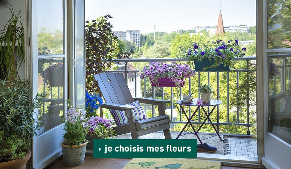 Mes fleurs pour jardinière