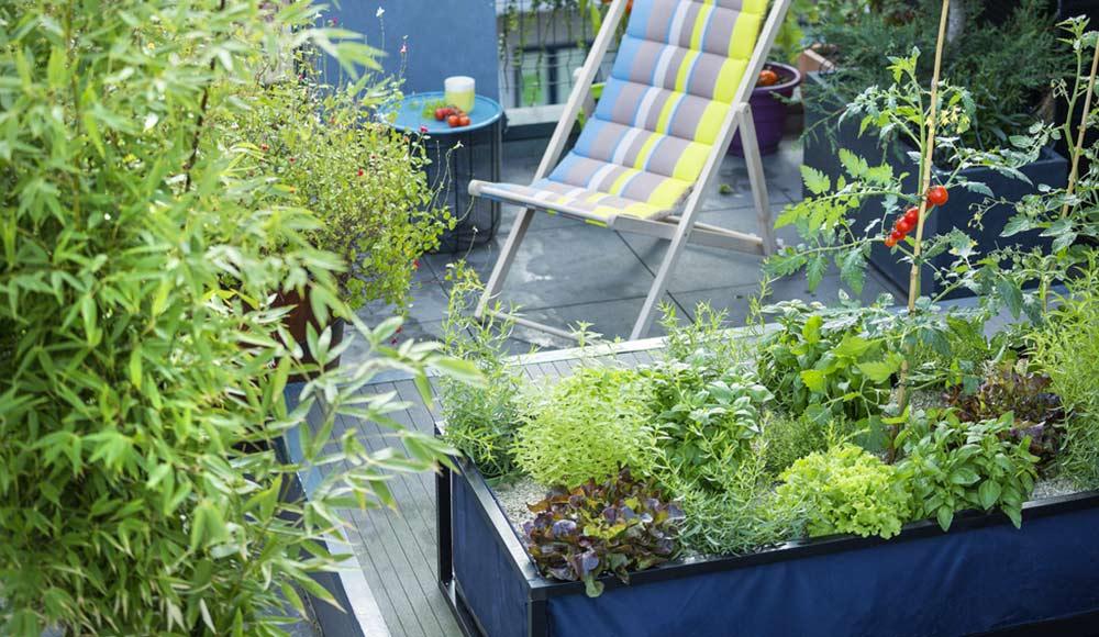potager botanic. Black Bedroom Furniture Sets. Home Design Ideas